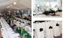 Wedding setup at Yowie bay -  your Wedding at home